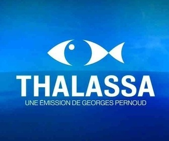 Thalassa replay
