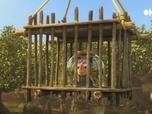 Replay Les as de la jungle à la rescousse - S3 E3 : Les dents de la plage