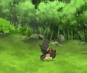 Replay Mini Ninjas - S02 E09 - Sanjoru s'est échappé