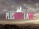 Replay Plus belle la vie - S17 E4125 : 4125