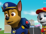 Replay Paw Patrol, la Pat'Patrouille - S05 - Les chats secouristes
