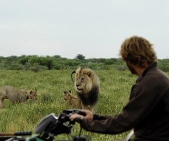 Vivre Avec Les Lions replay