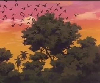Replay Le livre de la jungle - episode 46 - vf